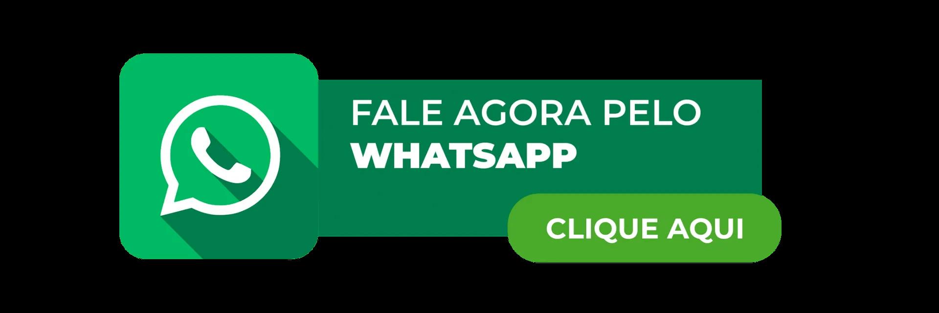 Fale agora pelo WhatsApp | Aprenda a como otimizar o WordPress